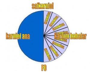 safkarniolFO