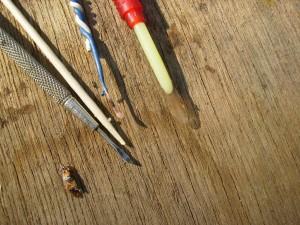 ana arı üretim kaşıkları_larva transferi